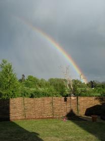 Rainbow over the spinney